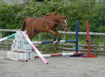 Ruby jump lunge web 2