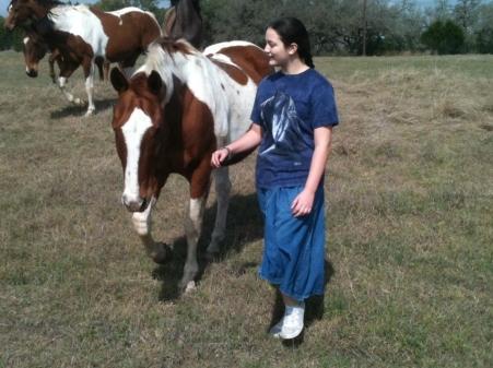 shirah horses